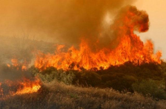 Φωτιά σε εξέλιξη στη Θεσσαλονίκη