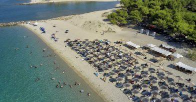 Επιμελητήριο Χαλκιδικής: Η περιοχή μας είναι ασφαλής