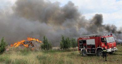 Ξέσπασε φωτιά στο Πευκοχώρι Χαλκιδικής