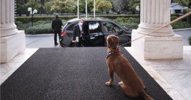Κυριάκος Μητσοτάκης: Υιοθέτησε… σκυλάκι (video)