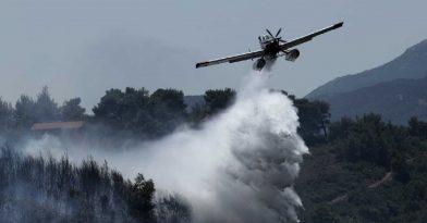 Χαλκιδική: Συναγερμός για φωτιά σε δασική περιοχή