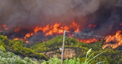 Φωτιά στην Ηλεία: Ένα χιλιόμετρο από την Αρχαία Ολυμπία οι φλόγες